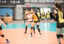 《企排》張秝芸告別戰沒遺憾 台電女排挑戰賽五連霸